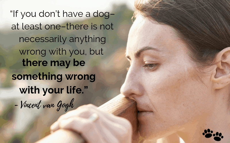 """If you don't have a dog–at least one–there is not necessarily anything wrong with you, but there may be something wrong with your life."" - 30 Inspiring Dog Quotes That Will Surely Melt Your Heart"