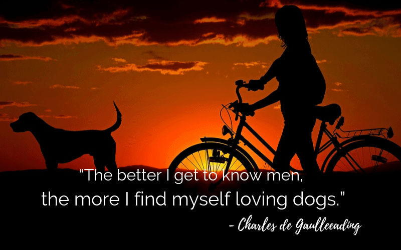 """The better I get to know men, the more I find myself loving dogs.""- 30 Inspiring Dog Quotes That Will Surely Melt Your Heart"