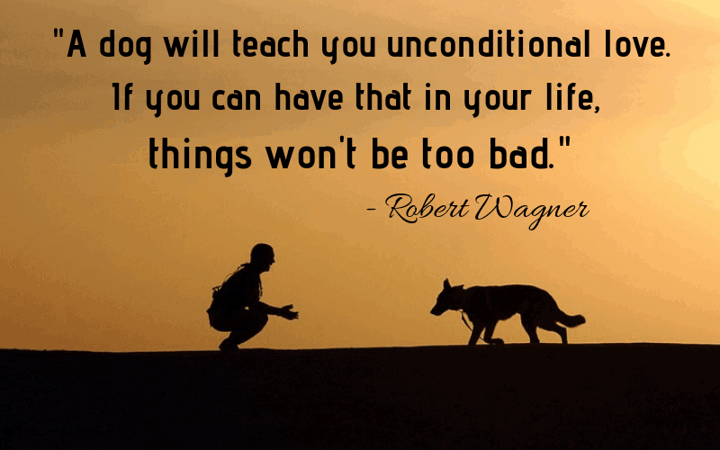 """""""A dog will teach you unconditional love. If you can have that in your life, things won't be too bad."""" - 30 Inspiring Dog Quotes That Will Surely Melt Your Heart"""