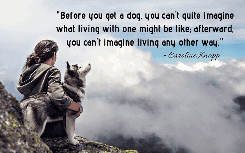 """Before you get a dog, you can't quite imagine what living with one might be like; afterward, you can't imagine living any other way.""- 30 Inspiring Dog Quotes That Will Surely Melt Your Heart"