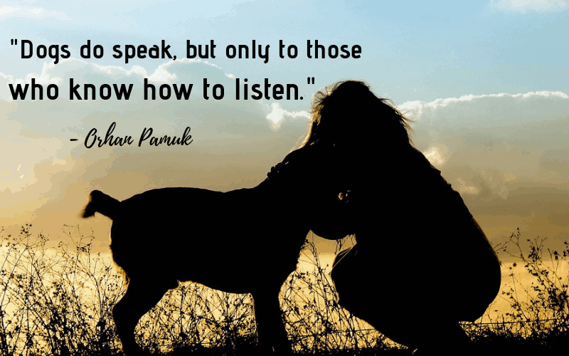 """Dogs do speak, but only to those who know how to listen.""- 30 Inspiring Dog Quotes That Will Surely Melt Your Heart"