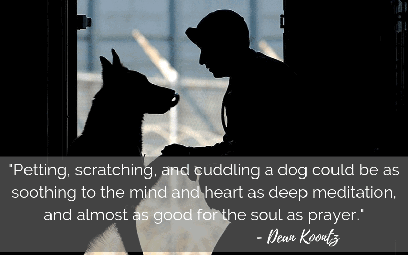 """Petting, scratching, and cuddling a dog could be as soothing to the mind and heart as deep meditation and almost as good for the soul as prayer."" - 30 Inspiring Dog Quotes That Will Surely Melt Your Heart"