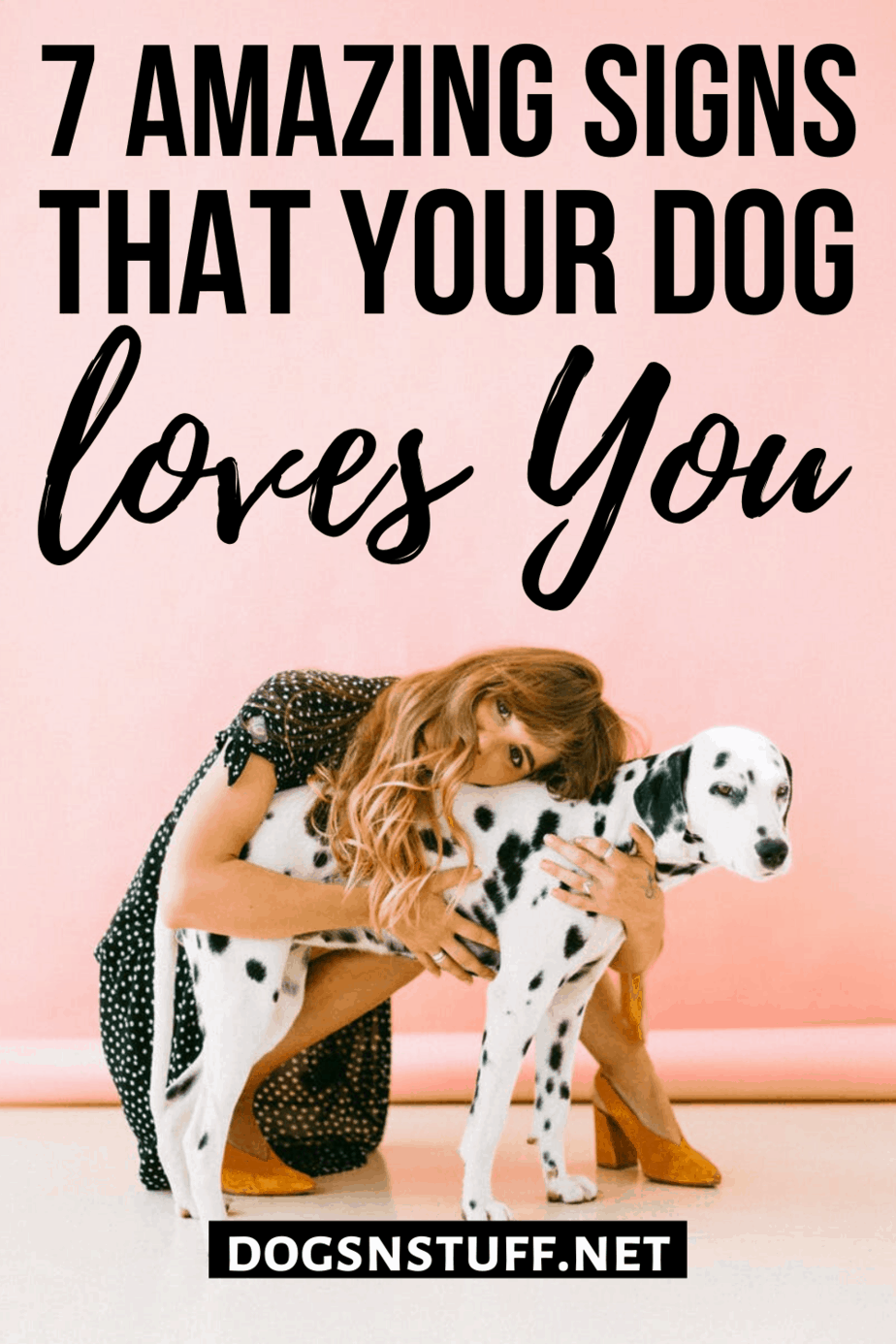 Signs that your dog loves you