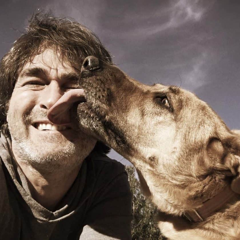 Why dogs lick: Grooming