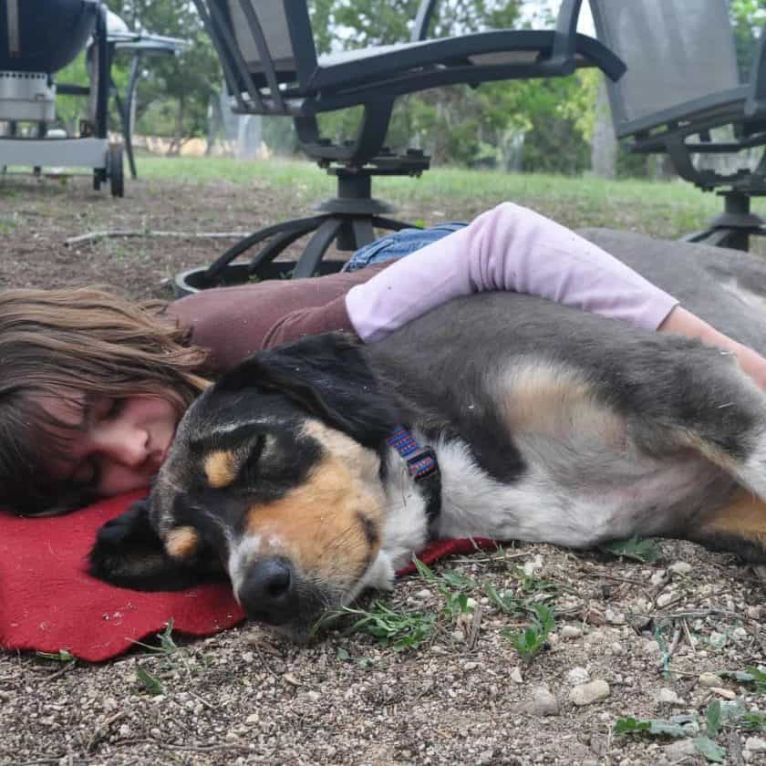 Your dog sleeps with you if you are their favorite person