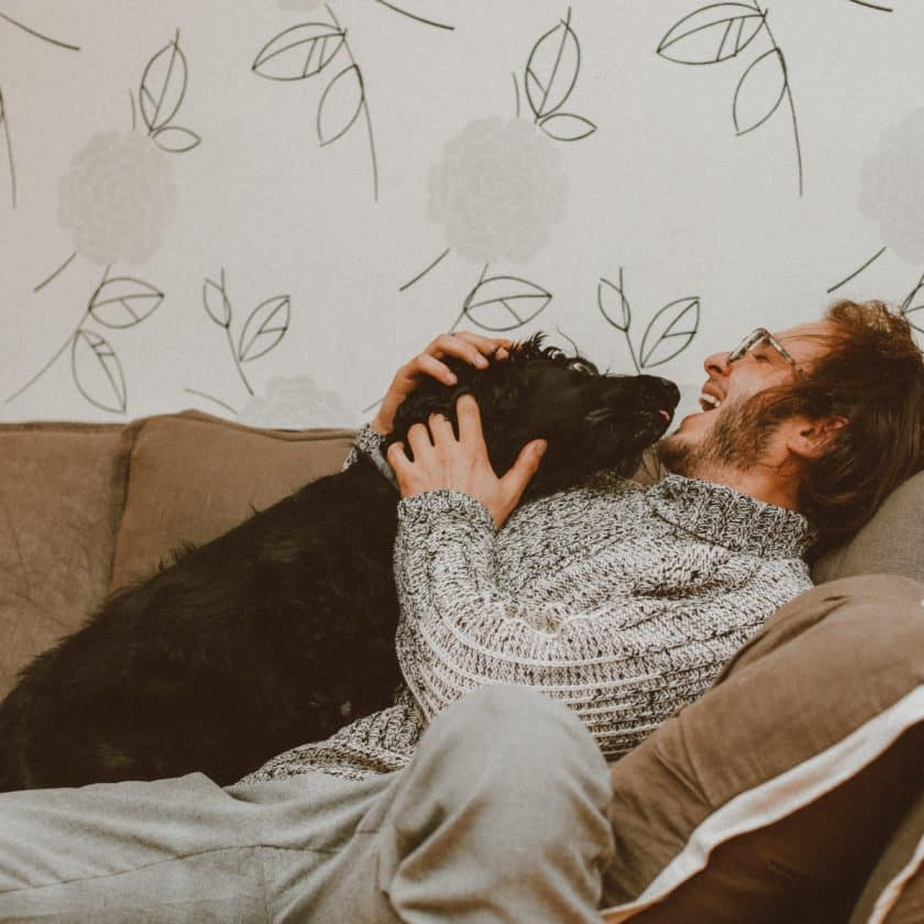 Leaning on your dog means you love them