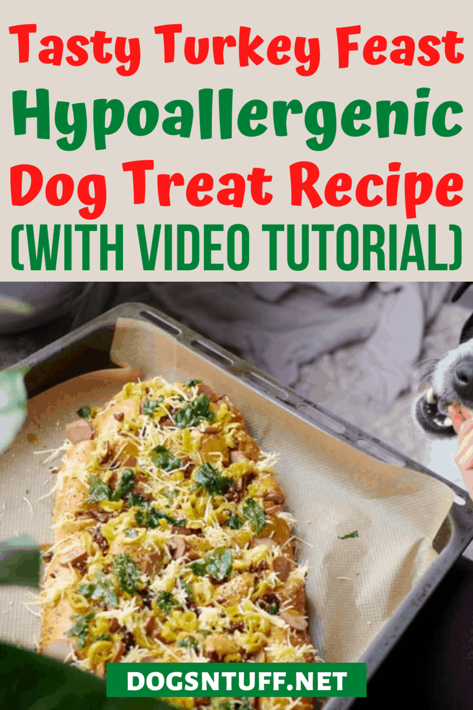 Tasty Leftover Turkey Dog Treats Recipe