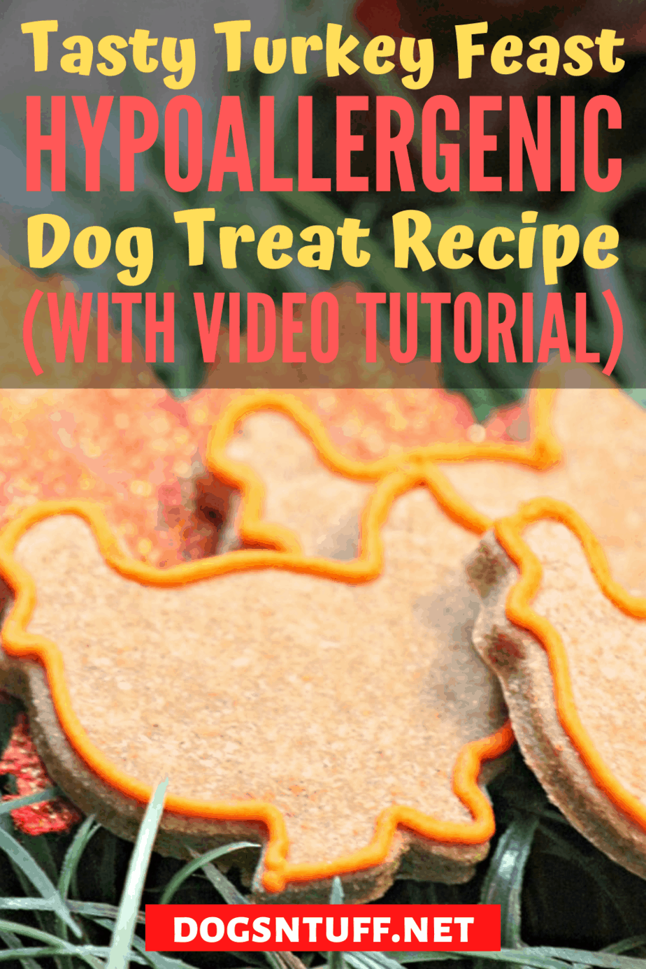 Delicious Homemade Turkey Dog Treats
