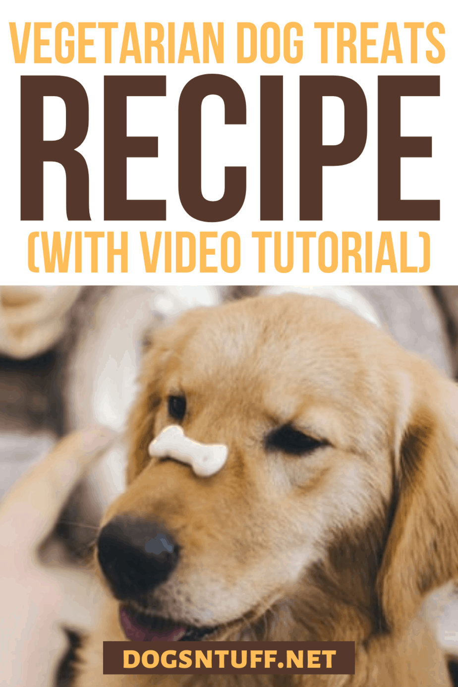 Easy Homemade Hypoallergenic Dog Treats Recipe