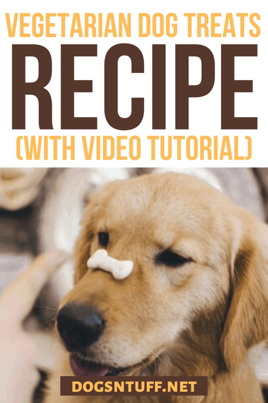 Hypoallergenic Dog Treats Recipe