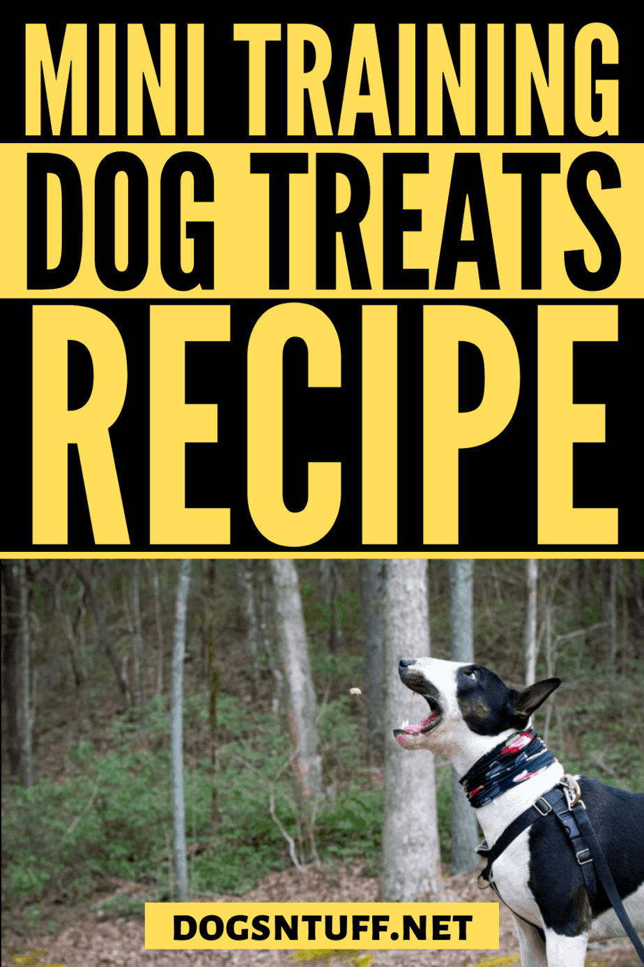 How to make DIY Dog Training Mini Treats?